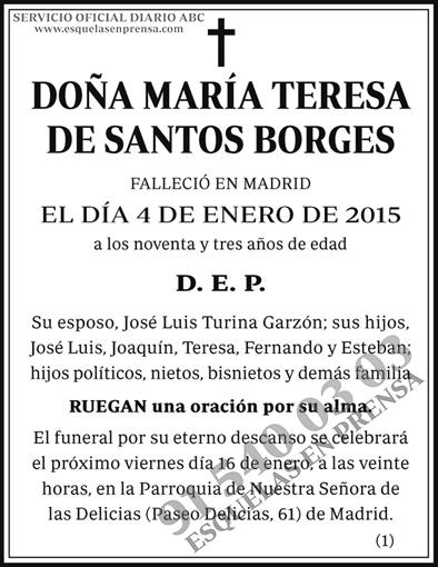 María Teresa de Santos Borges